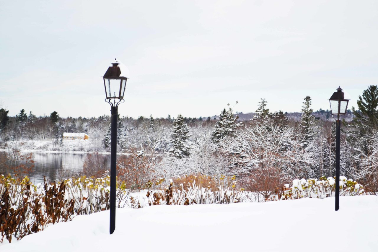French's Point in Winter